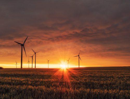 Sostenibilità: il settore industriale bolognese è sempre più green